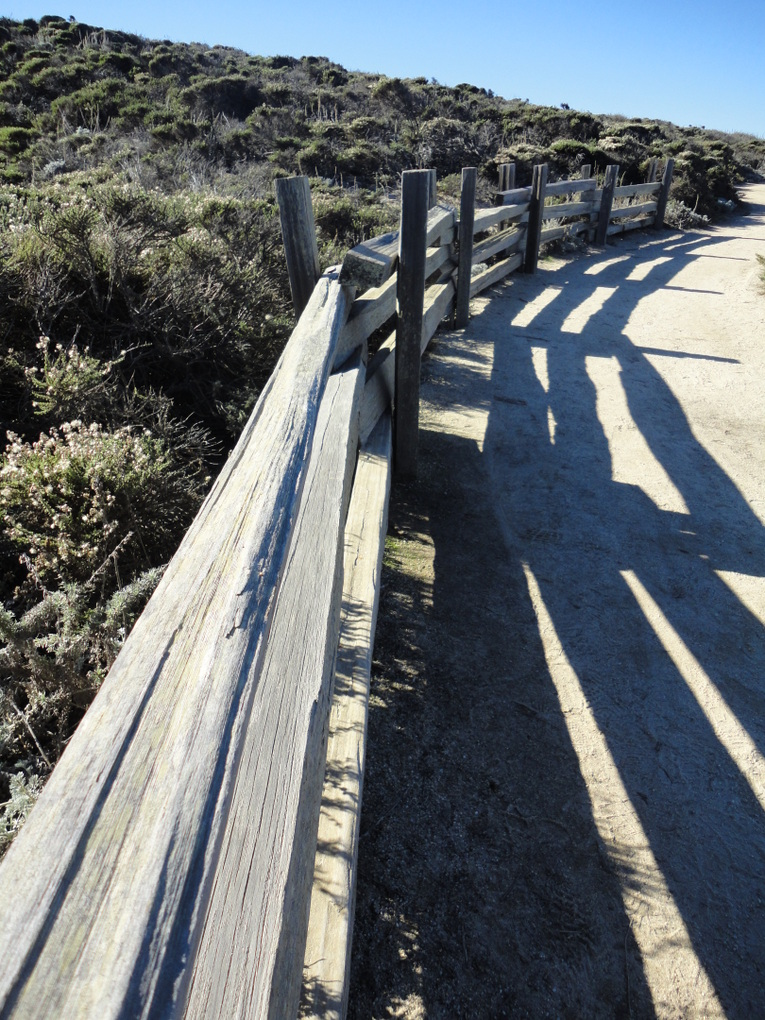 Digital Photography: Leading Lines