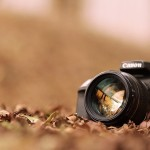 Capturing Nature / Scenic Photography