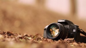 Nature Photography classes
