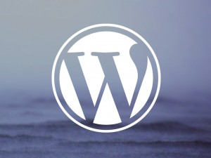 wordpress themes - customizing your theme