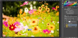Adobe Photoshop Classes