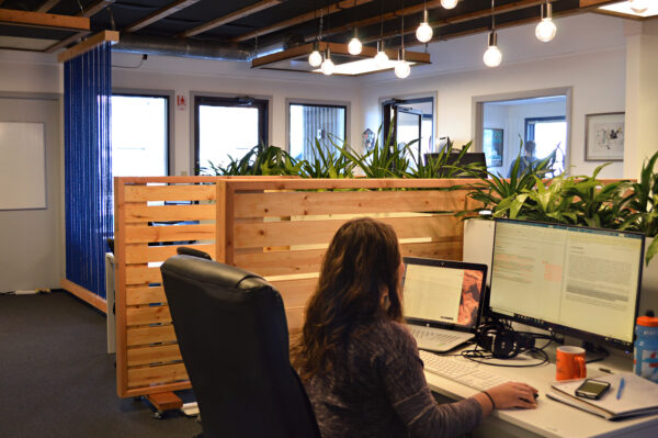 Fixed or Flex Workspaces